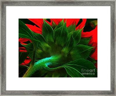 Framed Print featuring the photograph Derriere by Elfriede Fulda