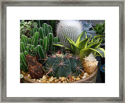 Desert Art Framed Print by Greg Patzer