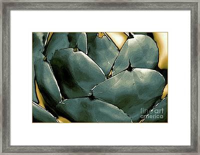 Desert Botanical 2  Framed Print by Linda  Parker