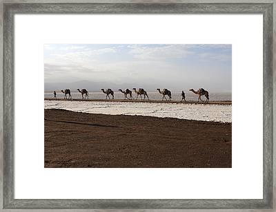People Of The Desert  Framed Print