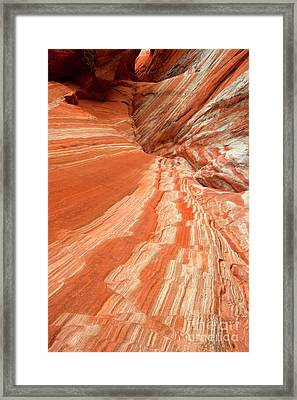 Desert Candyland Framed Print by Mike Dawson