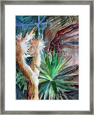 Desert Conservatory Framed Print by Mindy Newman