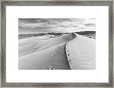 Desert Feet Framed Print by Jamie Pham