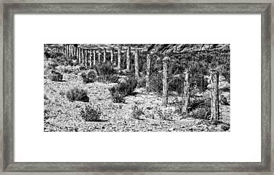 Desert Fence Framed Print by Bob Coates