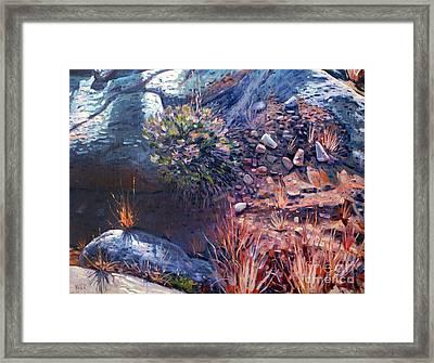 Desert Floor Framed Print