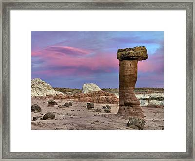 Desert Forms Framed Print by Leland D Howard