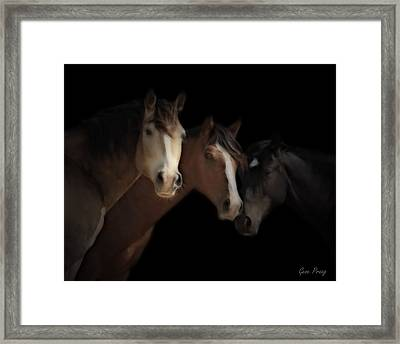 Desert Ghosts Framed Print by Gene Praag