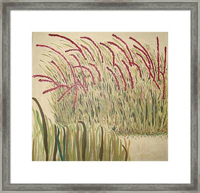 Desert Grasses Framed Print by Wendy Peat