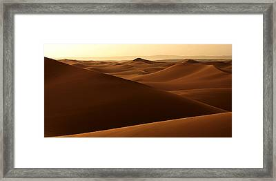 Desert Impression Framed Print by PIXELS  XPOSED Ralph A Ledergerber Photography