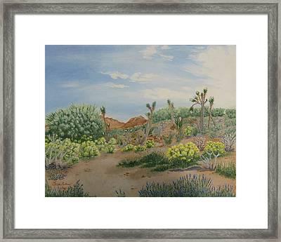 Desert In Bloom Framed Print by Joan Taylor-Sullivant