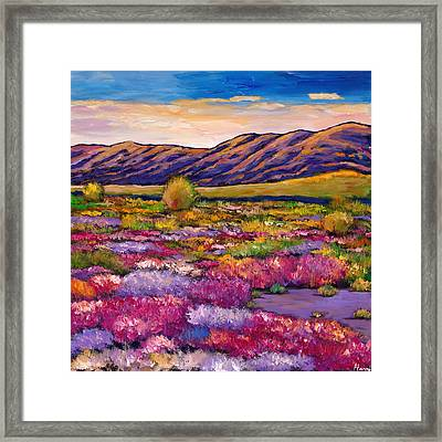 Desert In Bloom Framed Print