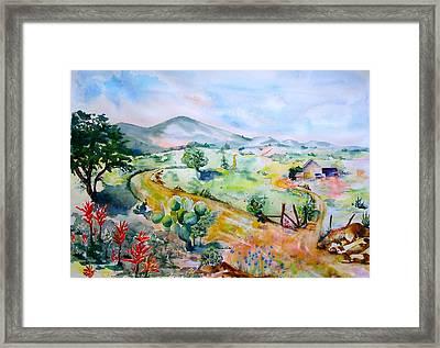 Desert In Bloom Framed Print