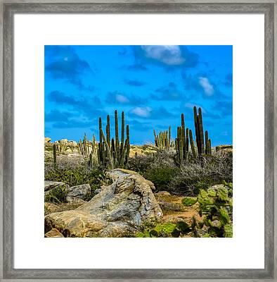 Desert Island Framed Print by Janal Koenig