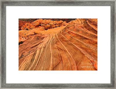 Desert Lines And Squiggles Framed Print by Adam Jewell