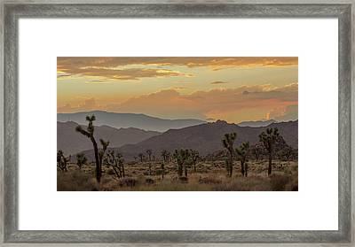 Desert Magic Framed Print