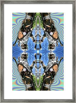 Desert Merlin Framed Print by Filip Klein