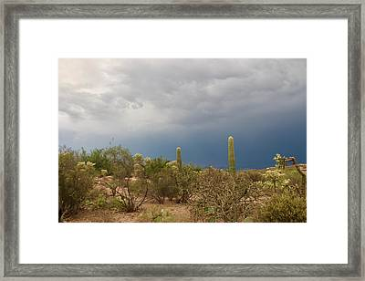 Desert Monsoon Clouds Framed Print