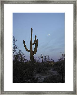 Framed Print featuring the photograph Desert Moon by Nancy Taylor