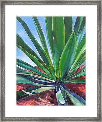 Desert Plant Framed Print by Karen Doyle