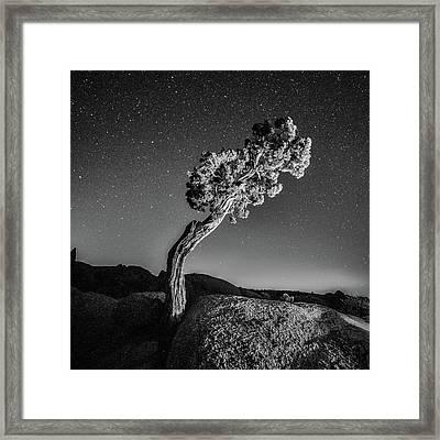 Causality V Framed Print