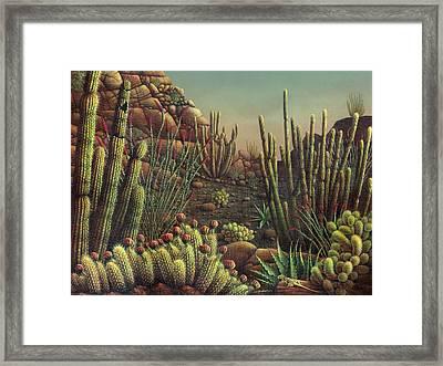 Desert Potpourri  Framed Print