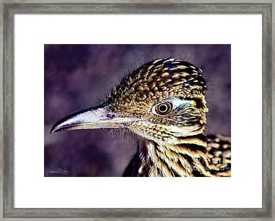 Desert Predator Framed Print