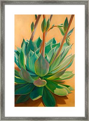 Desert Rainbow Framed Print by Athena  Mantle