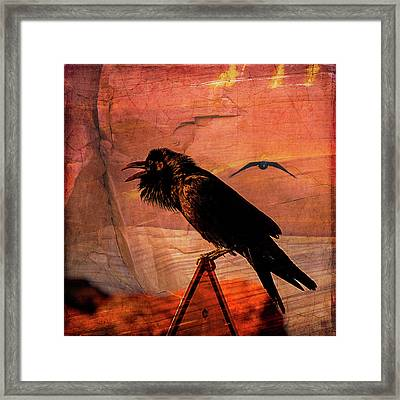 Framed Print featuring the photograph Desert Raven by Mary Hone