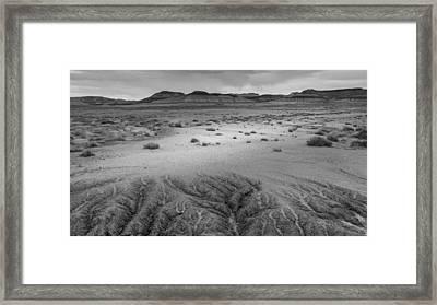 Desert Rivulets Framed Print