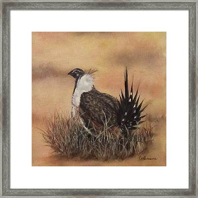 Desert Sage Grouse Framed Print