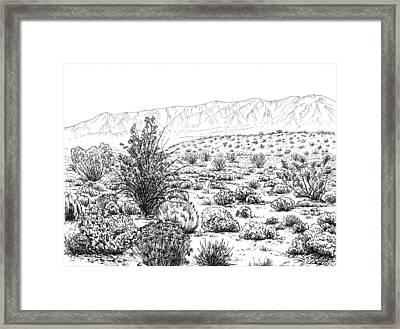 Desert Scrub Ecosystem Framed Print by Logan Parsons