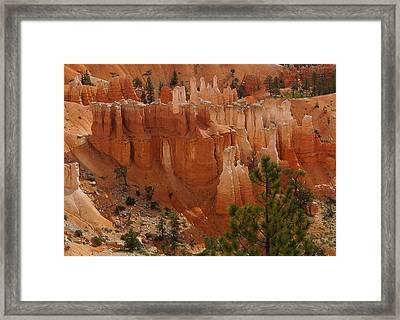 Desert Sentinels Framed Print