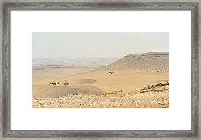 Framed Print featuring the photograph Desert by Silvia Bruno