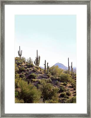 Framed Print featuring the photograph Desert Skyline by Gordon Beck