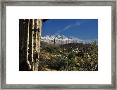Desert Snow Framed Print by John Gee