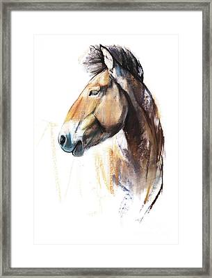 Desert Spirit Przewalski Framed Print by Mark Adlington