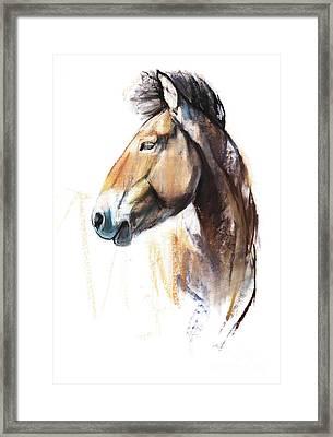 Desert Spirit Przewalski Framed Print