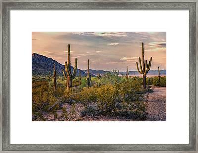 Desert Sun Setting - San Tan - Arizona Framed Print