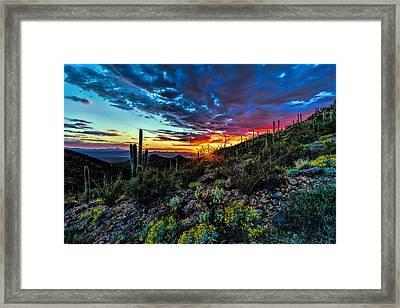 Desert Sunset Hdr 01 Framed Print