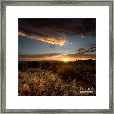 Desert Sunset Framed Print by Matt Tilghman