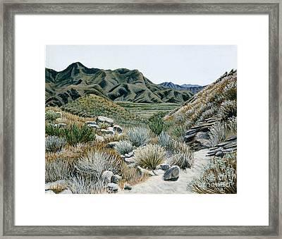 Desert Trail Framed Print by Jiji Lee