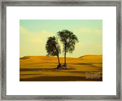 Desert Trees Framed Print