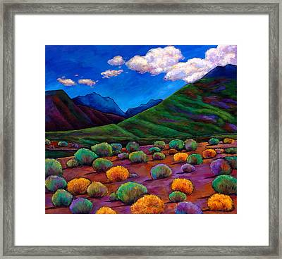 Desert Valley Framed Print