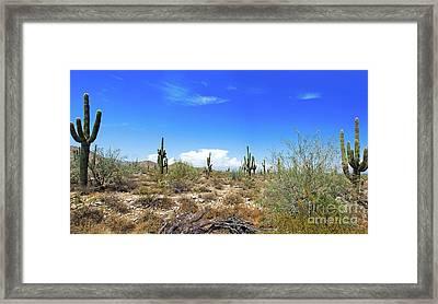 Desert View Framed Print