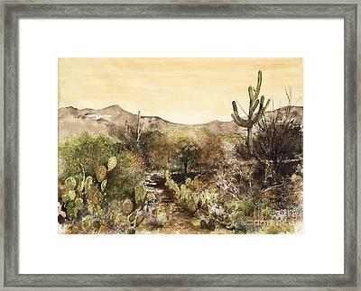 Desert Walk Framed Print