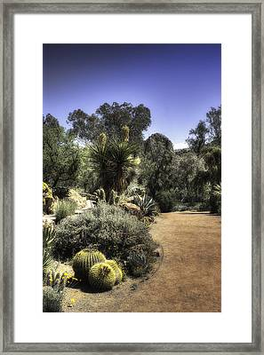 Framed Print featuring the photograph Desert Walkway by Lynn Geoffroy