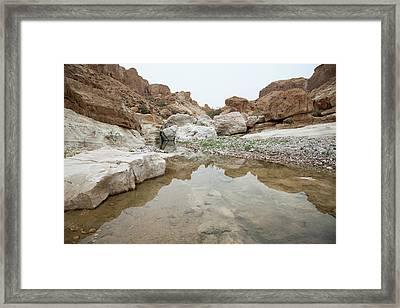 Desert Water Framed Print