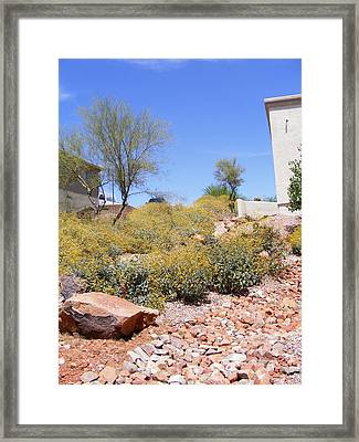 Desert Yard Framed Print by Adam Cornelison