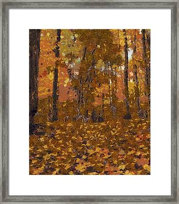 Design Of Autumn Framed Print by Dan Sproul