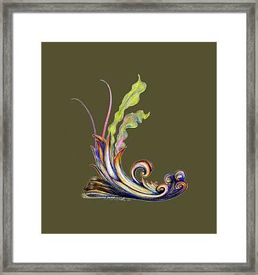 Design16 Framed Print by Walter Idema